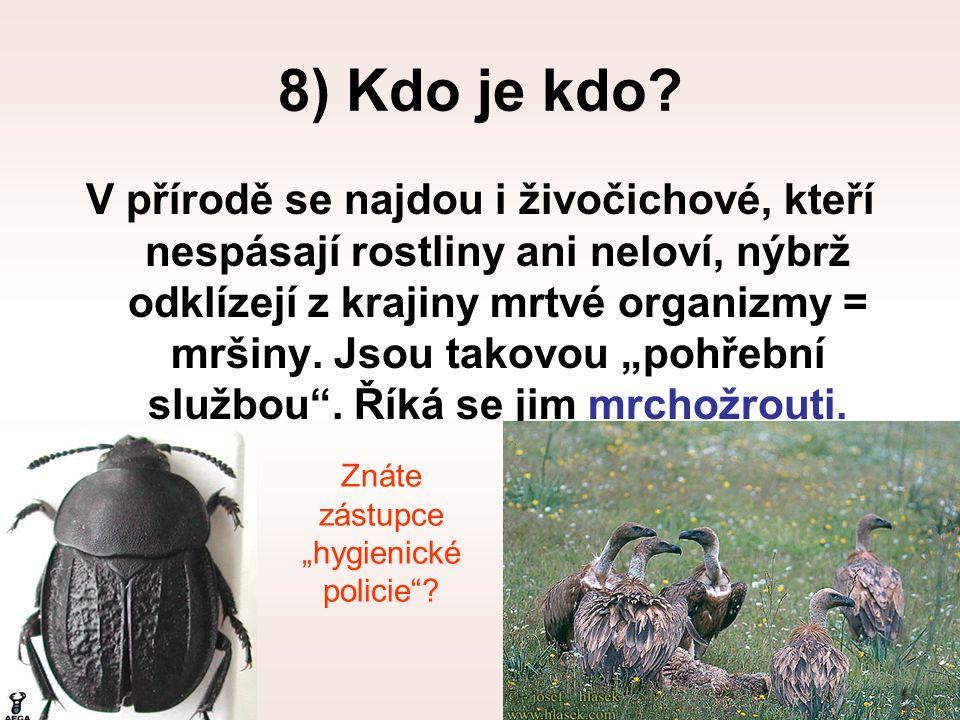 8) Kdo je kdo? V přírodě se najdou i živočichové, kteří nespásají rostliny ani neloví, nýbrž odklízejí z krajiny mrtvé organizmy = mršiny. Jsou takovo
