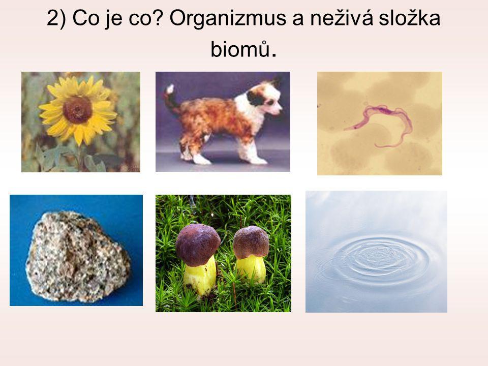 2) Co je co? Organizmus a neživá složka biomů.