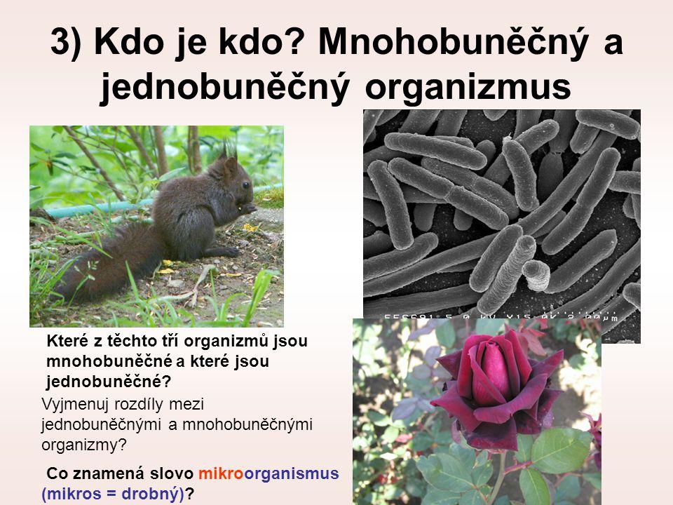 3) Kdo je kdo? Mnohobuněčný a jednobuněčný organizmus Vyjmenuj rozdíly mezi jednobuněčnými a mnohobuněčnými organizmy? Které z těchto tří organizmů js