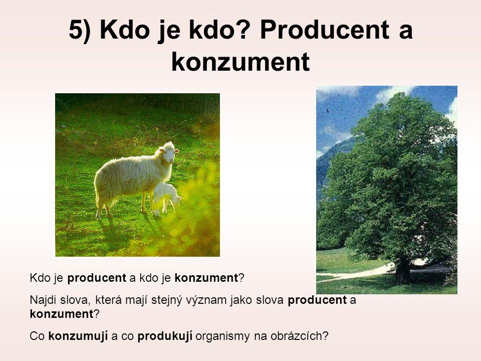 5) Kdo je kdo? Producent a konzument Kdo je producent a kdo je konzument? Najdi slova, která mají stejný význam jako slova producent a konzument? Co k