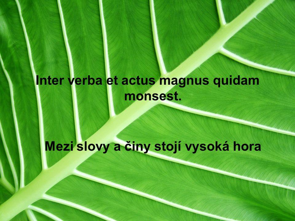 Inter verba et actus magnus quidam monsest. Mezi slovy a činy stojí vysoká hora