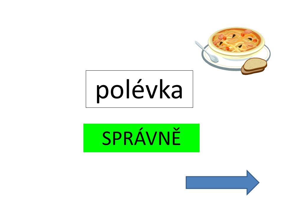 SPRÁVNĚ polévka
