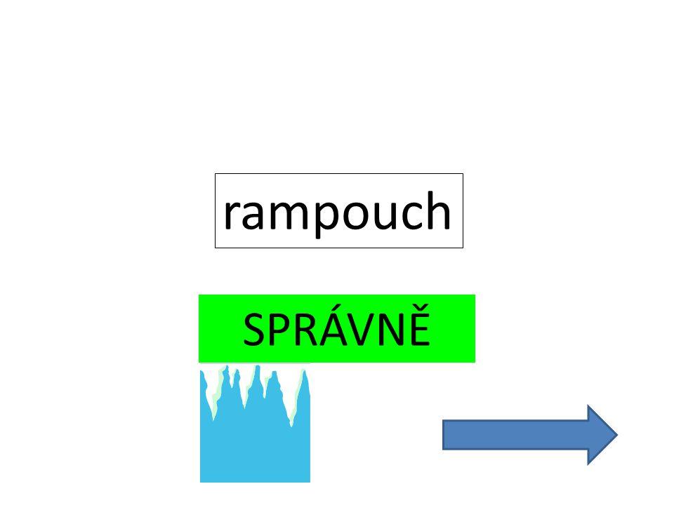 SPRÁVNĚ rampouch