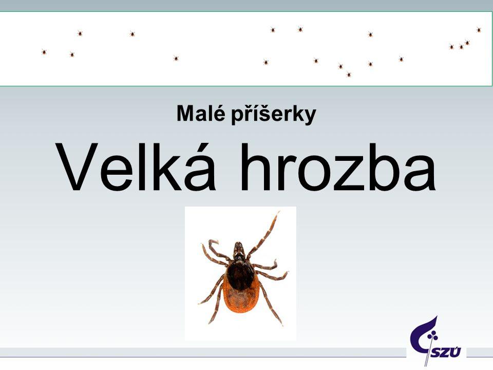Podobní malým pavoukům trpělivě číhají na zvíře nebo na člověka, aby sáli jeho krev