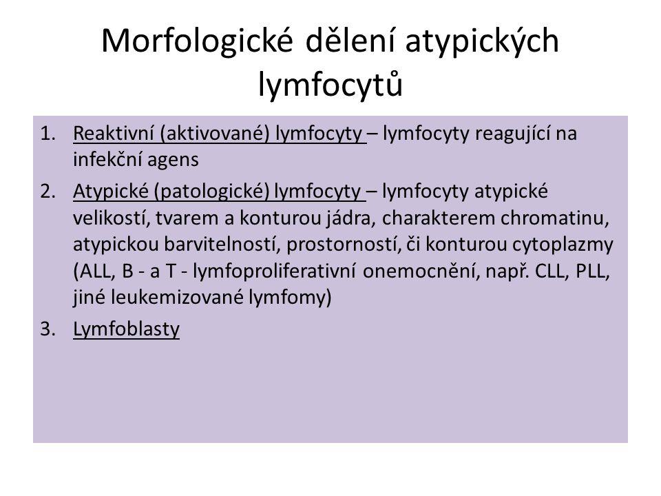 Morfologické dělení atypických lymfocytů 1.Reaktivní (aktivované) lymfocyty – lymfocyty reagující na infekční agens 2.Atypické (patologické) lymfocyty