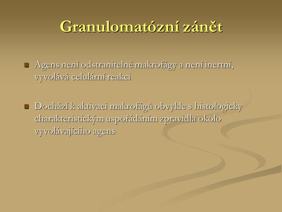 Granulomatózní zánět  Agens není odstranitelné makrofágy a není inertní, vyvolává celulární reakci  Dochází k aktivaci makrofágů obvykle s histologi