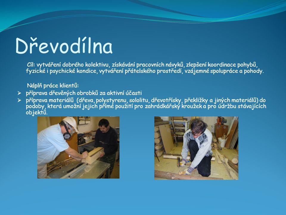 Dřevodílna Cíl: vytváření dobrého kolektivu, získávání pracovních návyků, zlepšení koordinace pohybů, fyzické i psychické kondice, vytváření přátelské