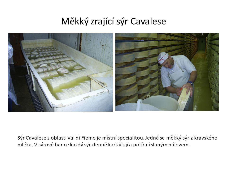 Měkký zrající sýr Cavalese Sýr Cavalese z oblasti Val di Fieme je místní specialitou.