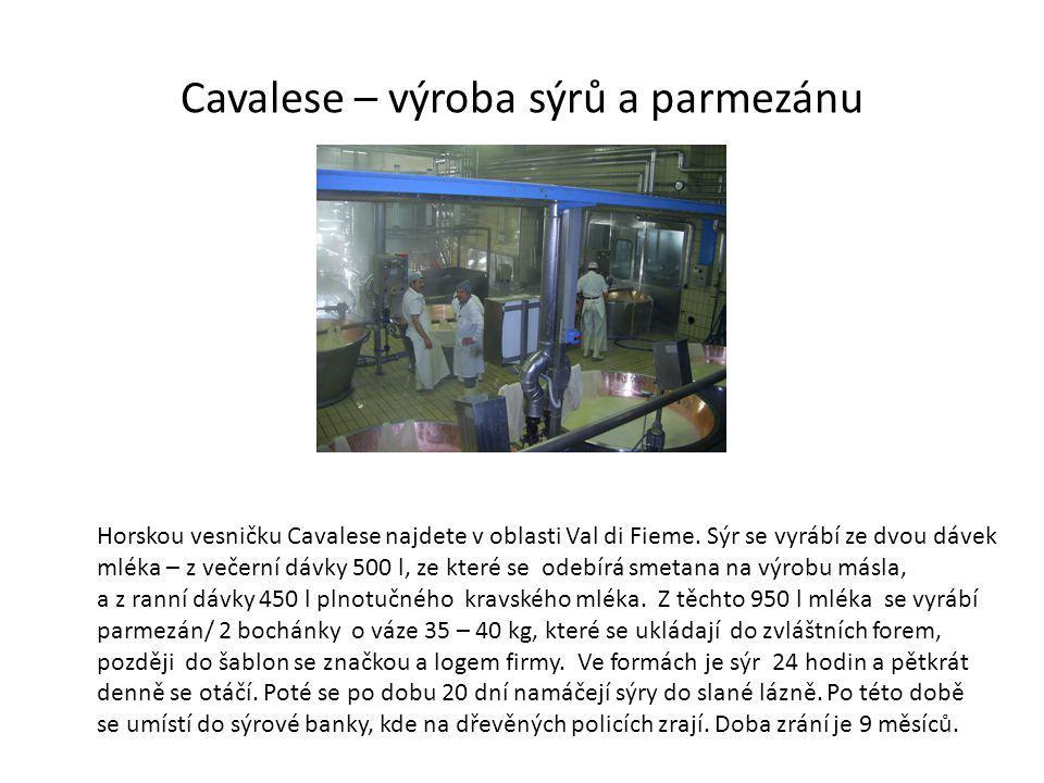 Cavalese – výroba sýrů a parmezánu Horskou vesničku Cavalese najdete v oblasti Val di Fieme.