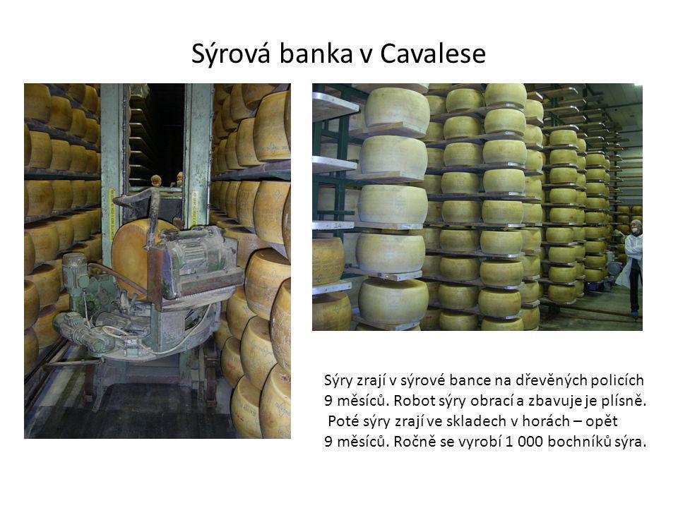 Sýrová banka v Cavalese Sýry zrají v sýrové bance na dřevěných policích 9 měsíců.