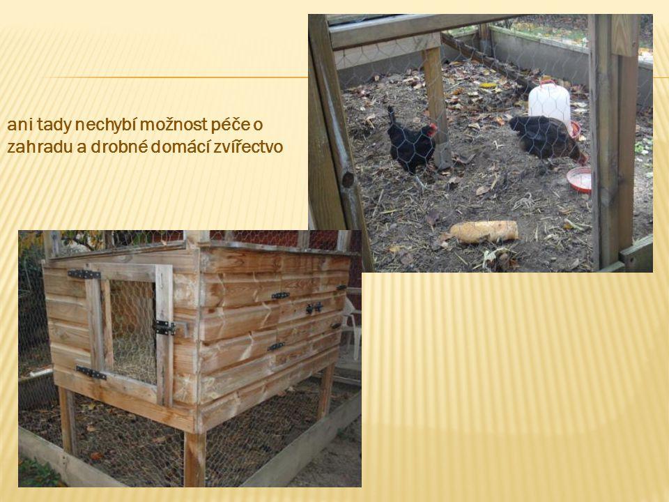 ani tady nechybí možnost péče o zahradu a drobné domácí zvířectvo