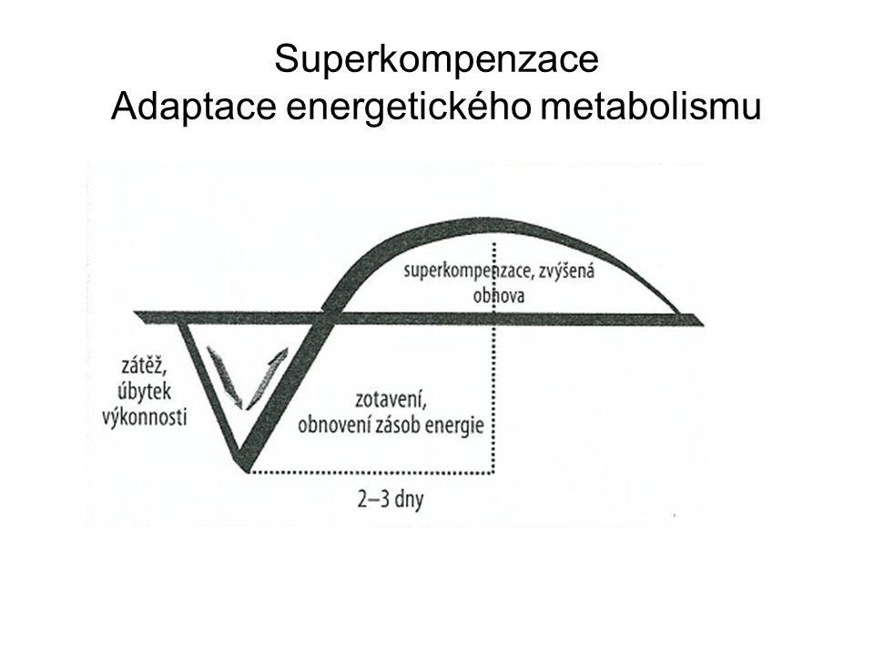 Superkompenzace Adaptace energetického metabolismu