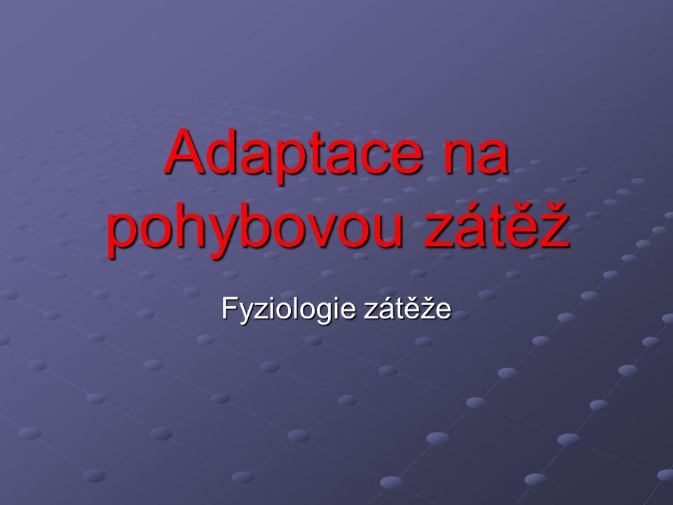 Adaptace na pohybovou zátěž Fyziologie zátěže