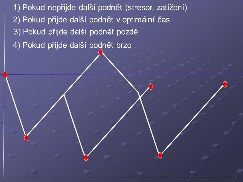 1) Pokud nepřijde další podnět (stresor, zatížení) 2) Pokud přijde další podnět v optimální čas 3) Pokud přijde další podnět pozdě 4) Pokud přijde dal