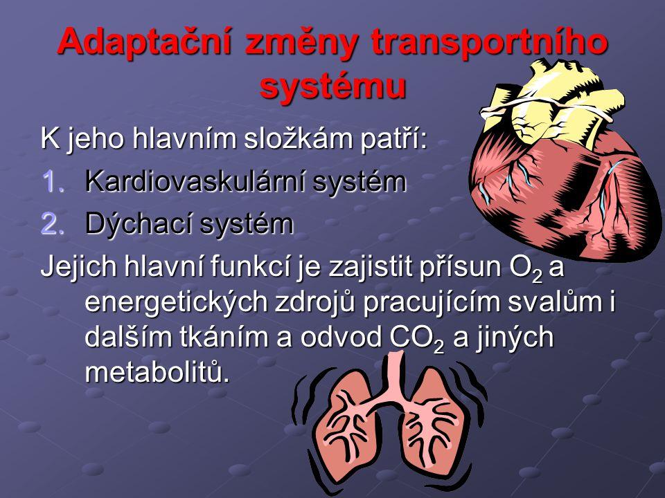 Adaptační změny transportního systému K jeho hlavním složkám patří: 1.Kardiovaskulární systém 2.Dýchací systém Jejich hlavní funkcí je zajistit přísun