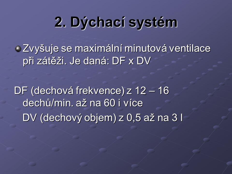 2. Dýchací systém Zvyšuje se maximální minutová ventilace při zátěži. Je daná: DF x DV DF (dechová frekvence) z 12 – 16 dechů /min. až na 60 i více DV