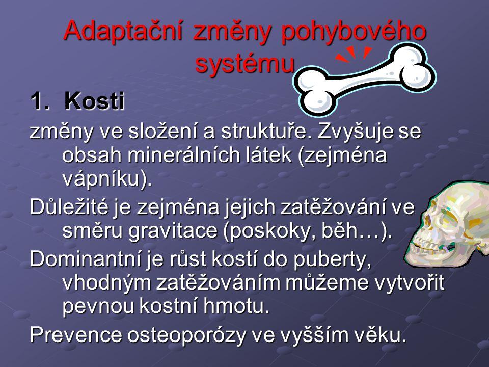 Adaptační změny pohybového systému 1. Kosti změny ve složení a struktuře. Zvyšuje se obsah minerálních látek (zejména vápníku). Důležité je zejména je
