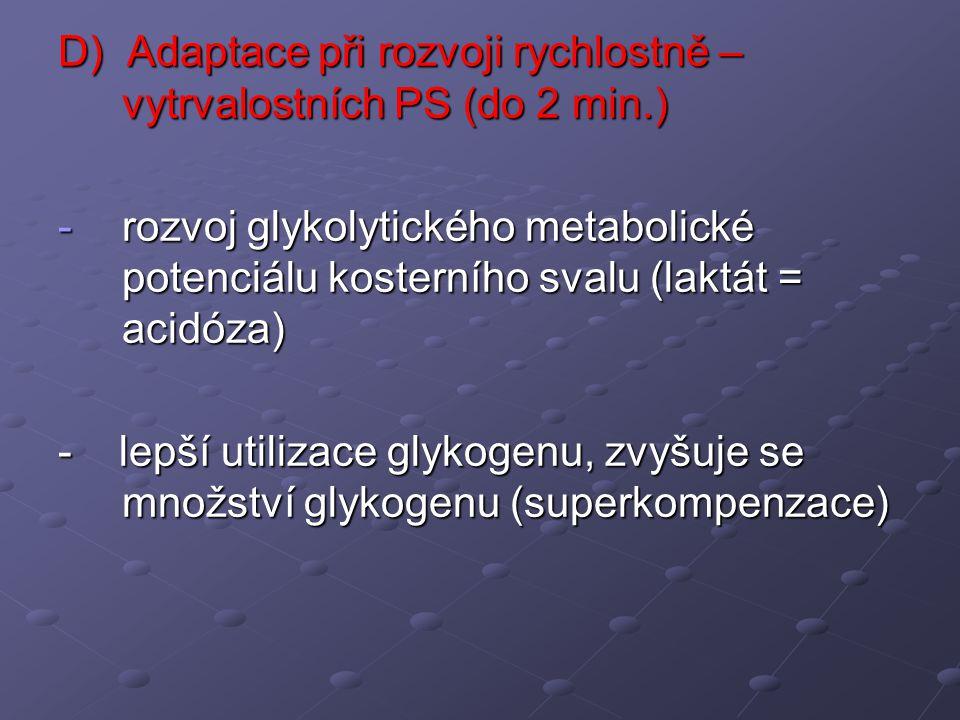 D) Adaptace při rozvoji rychlostně – vytrvalostních PS (do 2 min.) -rozvoj glykolytického metabolické potenciálu kosterního svalu (laktát = acidóza) -