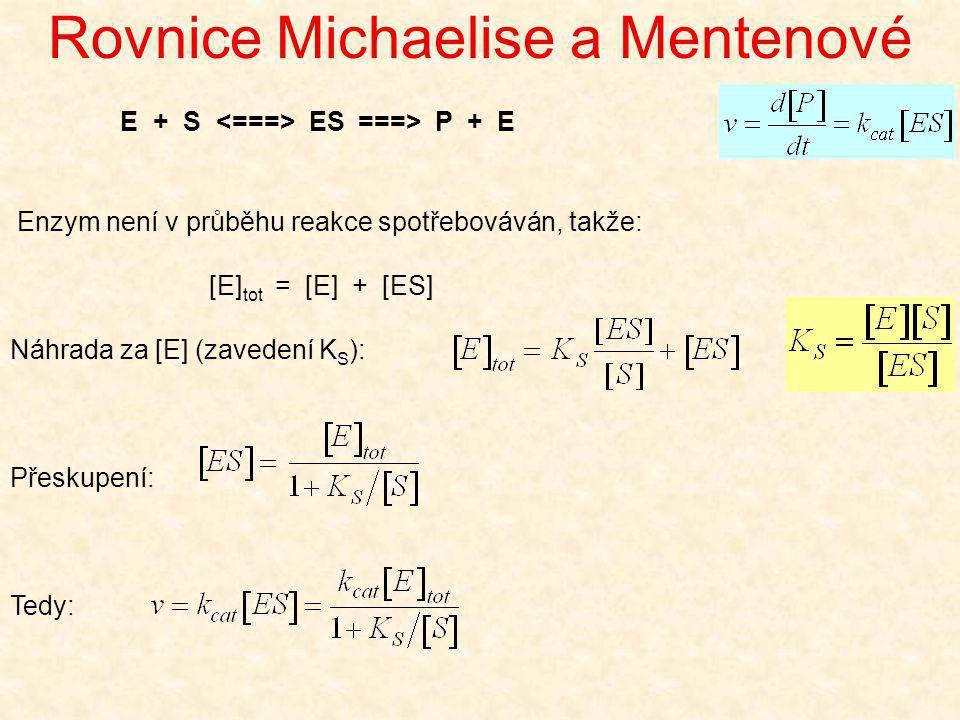 Rovnice Michaelise a Mentenové Enzym není v průběhu reakce spotřebováván, takže: [E] tot = [E] + [ES] Náhrada za [E] (zavedení K S ): Přeskupení: Tedy