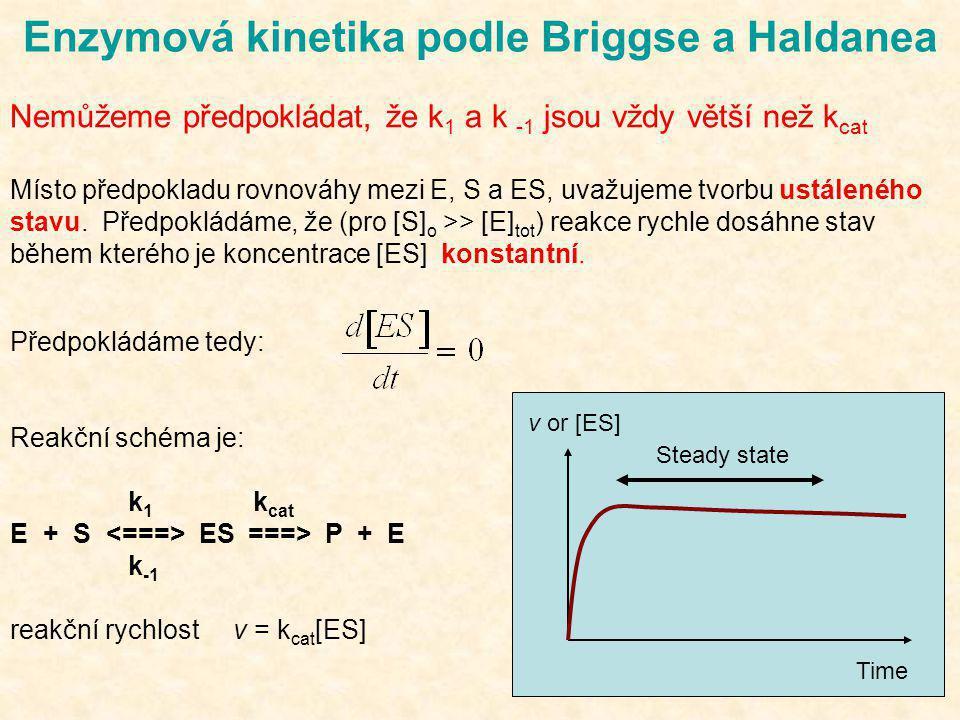 Enzymová kinetika podle Briggse a Haldanea Nemůžeme předpokládat, že k 1 a k -1 jsou vždy větší než k cat Místo předpokladu rovnováhy mezi E, S a ES,