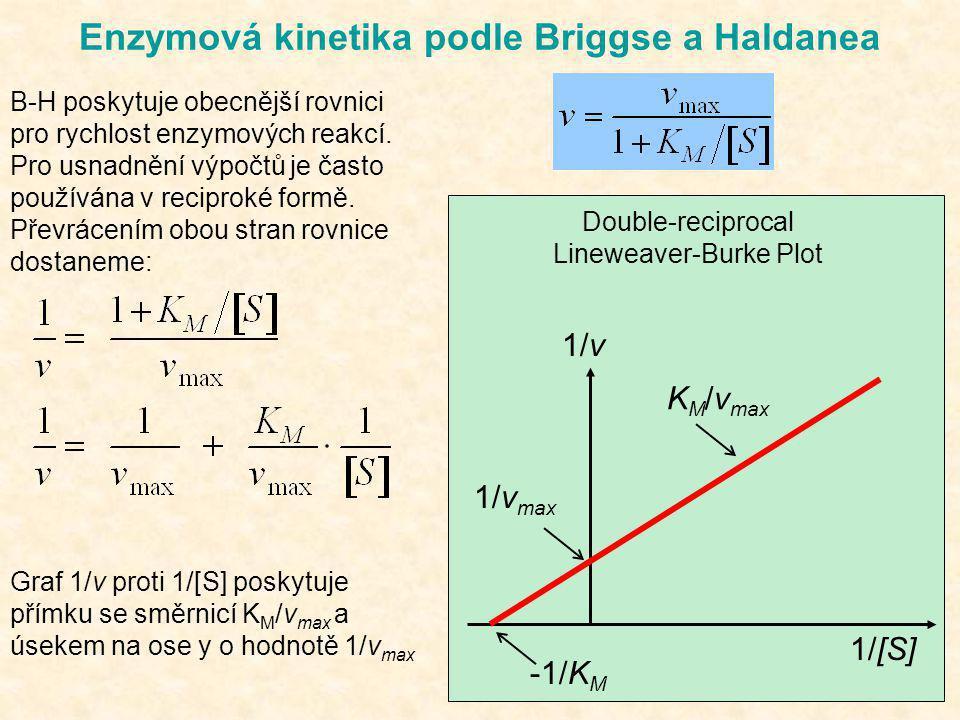 Enzymová kinetika podle Briggse a Haldanea B-H poskytuje obecnější rovnici pro rychlost enzymových reakcí. Pro usnadnění výpočtů je často používána v