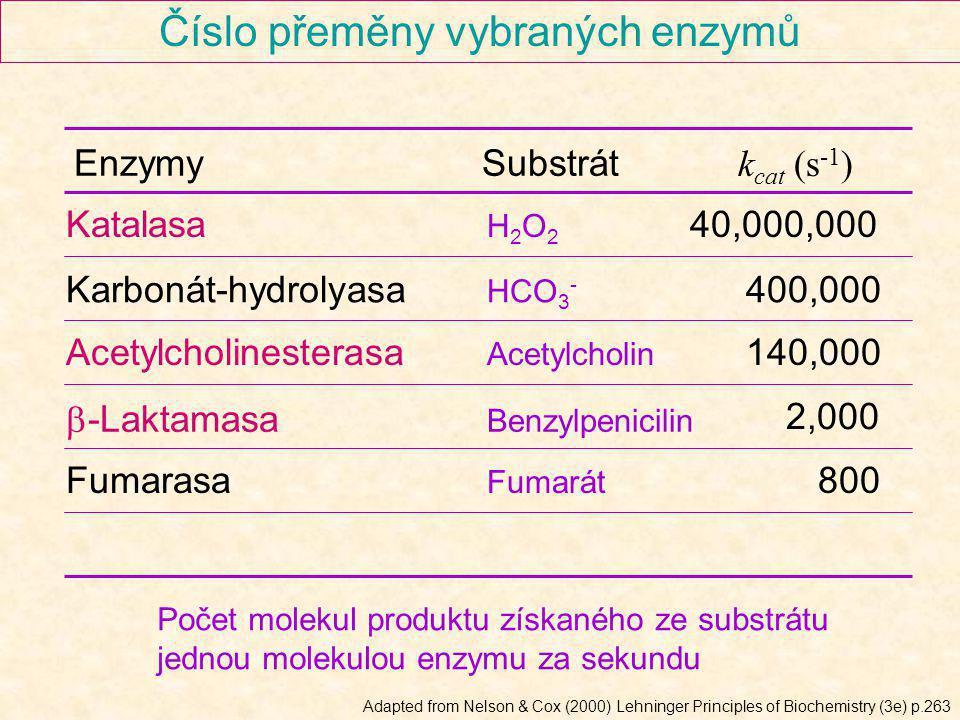 Číslo přeměny vybraných enzymů Katalasa H 2 O 2 Karbonát-hydrolyasa HCO 3 - Acetylcholinesterasa Acetylcholin 40,000,000 400,000 140,000 b-Laktamasa B