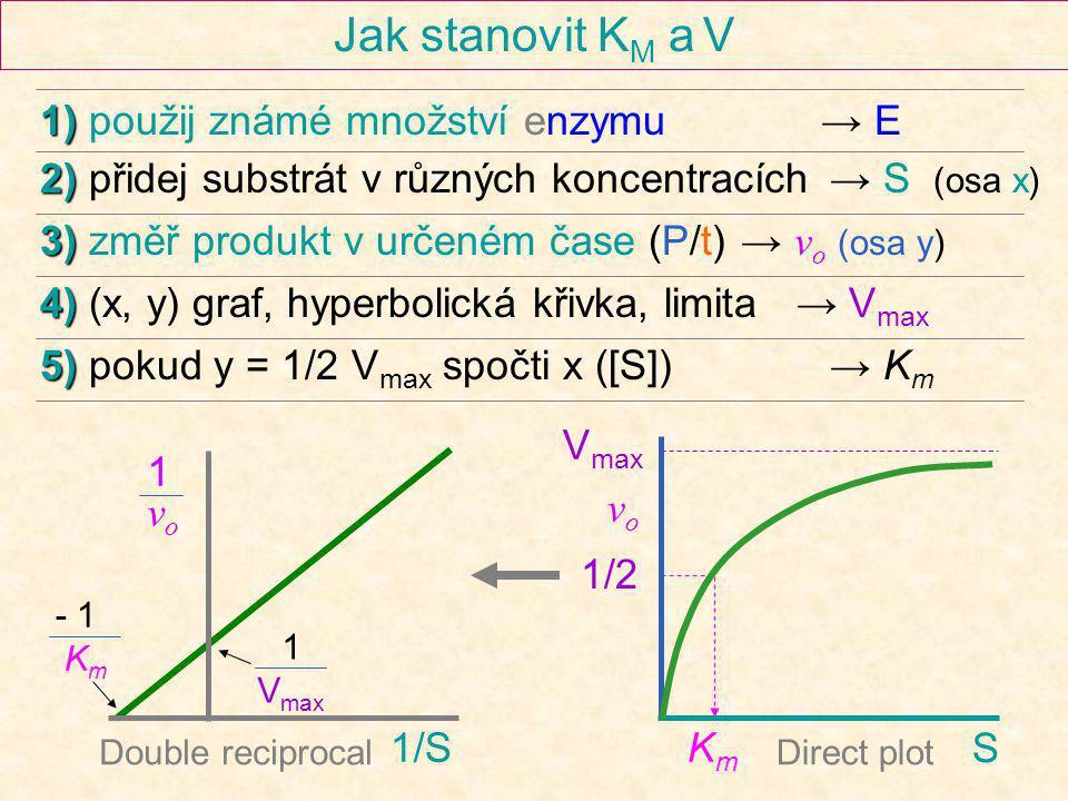 Jak stanovit K M a V V max KmKm S vovo 1/S 1vo1vo Double reciprocalDirect plot 1) 1) použij známé množství enzymu → E 2) 2) přidej substrát v různých