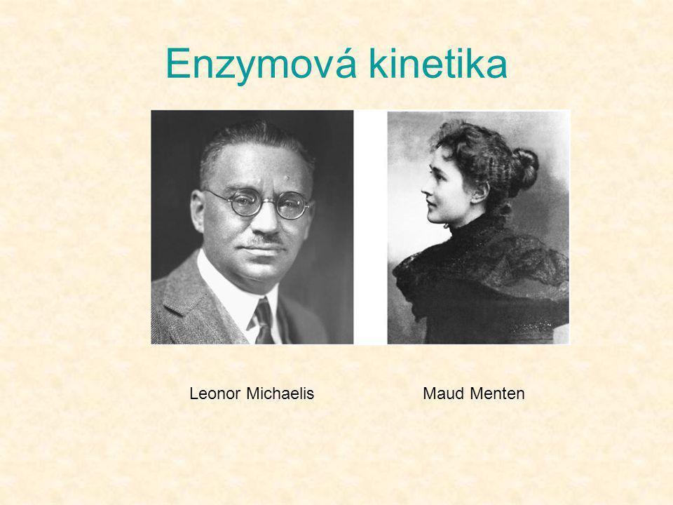 Enzymová kinetika Maud MentenLeonor Michaelis