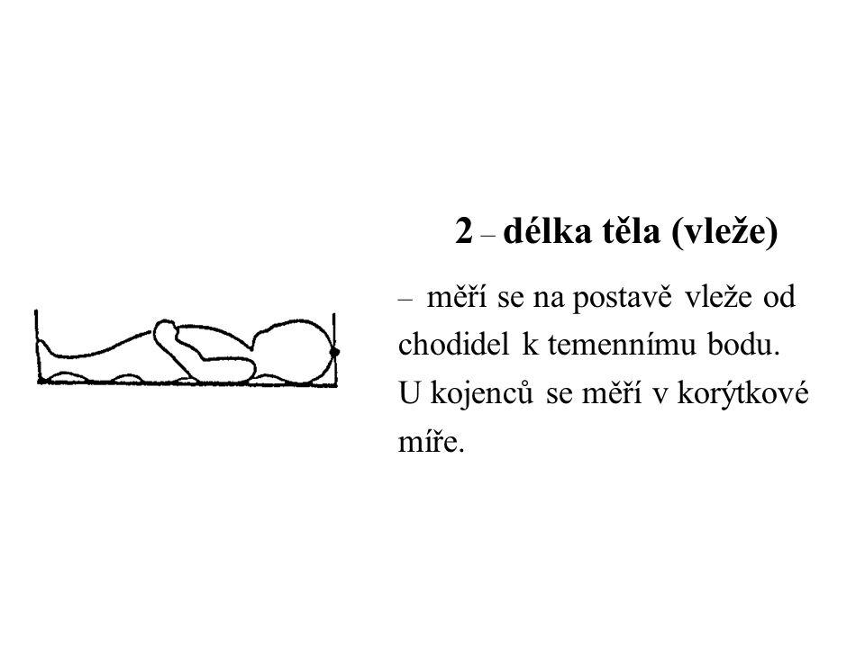2 – délka těla (vleže) – měří se na postavě vleže od chodidel k temennímu bodu. U kojenců se měří v korýtkové míře.
