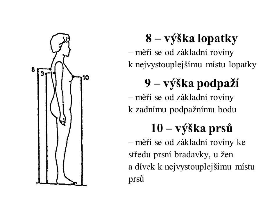 8 – výška lopatky – měří se od základní roviny k nejvystouplejšímu místu lopatky 9 – výška podpaží – měří se od základní roviny k zadnímu podpažnímu bodu 10 – výška prsů – měří se od základní roviny ke středu prsní bradavky, u žen a dívek k nejvystouplejšímu místu prsů