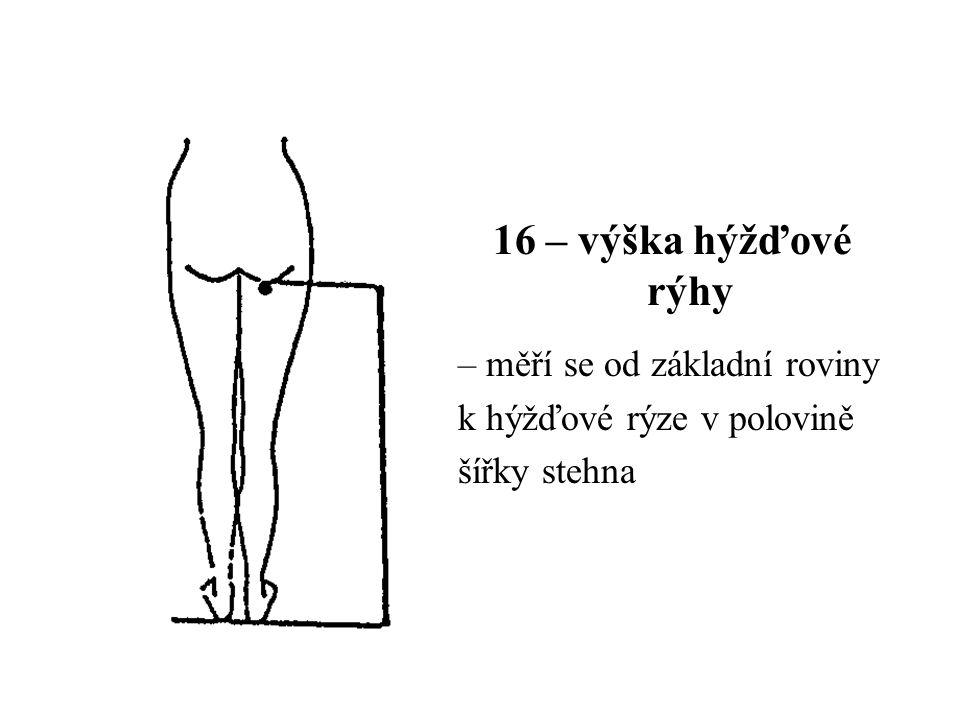 16 – výška hýžďové rýhy – měří se od základní roviny k hýžďové rýze v polovině šířky stehna
