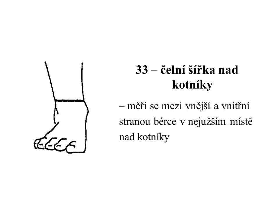 33 – čelní šířka nad kotníky – měří se mezi vnější a vnitřní stranou bérce v nejužším místě nad kotníky