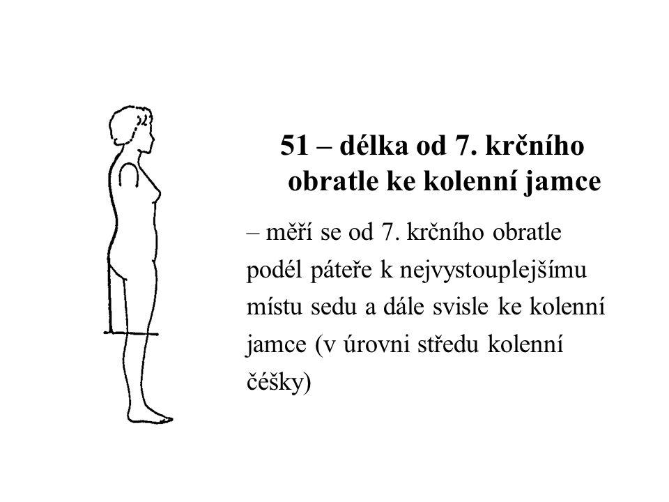 51 – délka od 7. krčního obratle ke kolenní jamce – měří se od 7. krčního obratle podél páteře k nejvystouplejšímu místu sedu a dále svisle ke kolenní