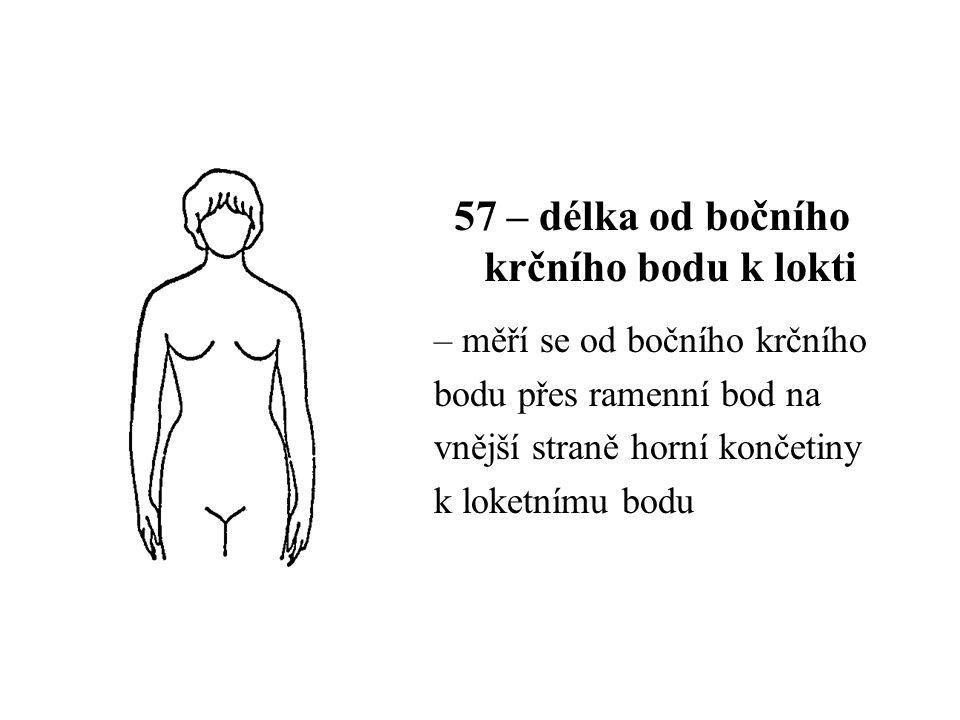 57 – délka od bočního krčního bodu k lokti – měří se od bočního krčního bodu přes ramenní bod na vnější straně horní končetiny k loketnímu bodu