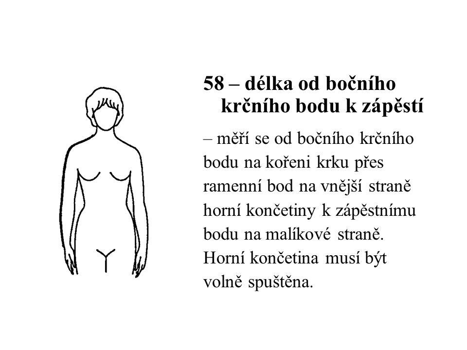 58 – délka od bočního krčního bodu k zápěstí – měří se od bočního krčního bodu na kořeni krku přes ramenní bod na vnější straně horní končetiny k zápěstnímu bodu na malíkové straně.