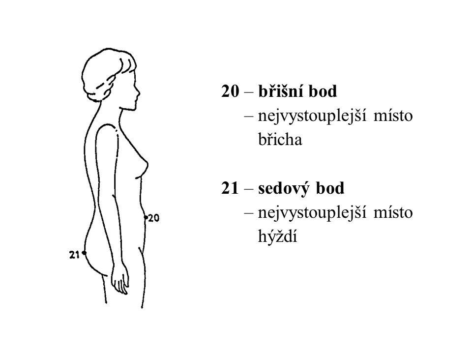 29 – čelní šířka sedu – měří se mezi bočními stranami pánve v úrovni nejvystouplejšího místa hýždí 30 – čelní šířka stehna – měří se mezi vnitřní a vnější stranou stehna v úrovni hýžďové rýhy