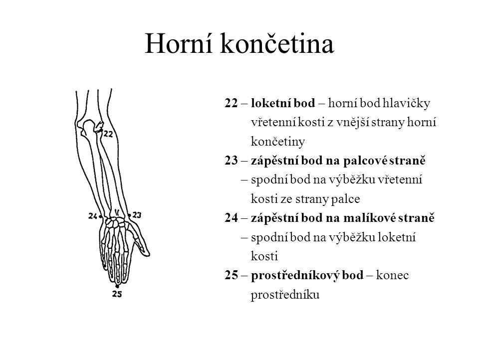 Dolní končetina 26 – kolenní bod – střed kolenní čéšky 27 – lýtkový bod – nejvystouplejší místo lýtka 28 – vnější kotníkový bod – vrchol vnějšího kotníku 29 – patní bod – nejvystouplejší místo paty nezávisle na jeho vzdálenosti od země 30 – přední konečný bod nohy – nejvystouplejší bod na špičce palce nebo druhého prstu 31 – nejvyšší bod nártu – nejvyšší místo nártu na přechodu nohy do bérce
