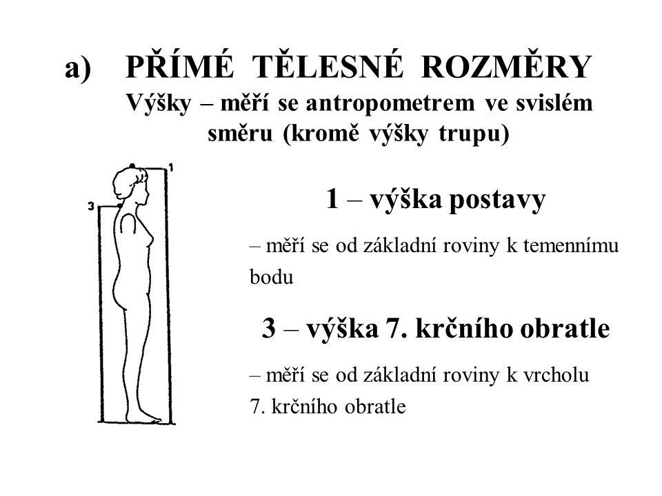 a)PŘÍMÉ TĚLESNÉ ROZMĚRY Výšky – měří se antropometrem ve svislém směru (kromě výšky trupu) 1 – výška postavy – měří se od základní roviny k temennímu bodu 3 – výška 7.