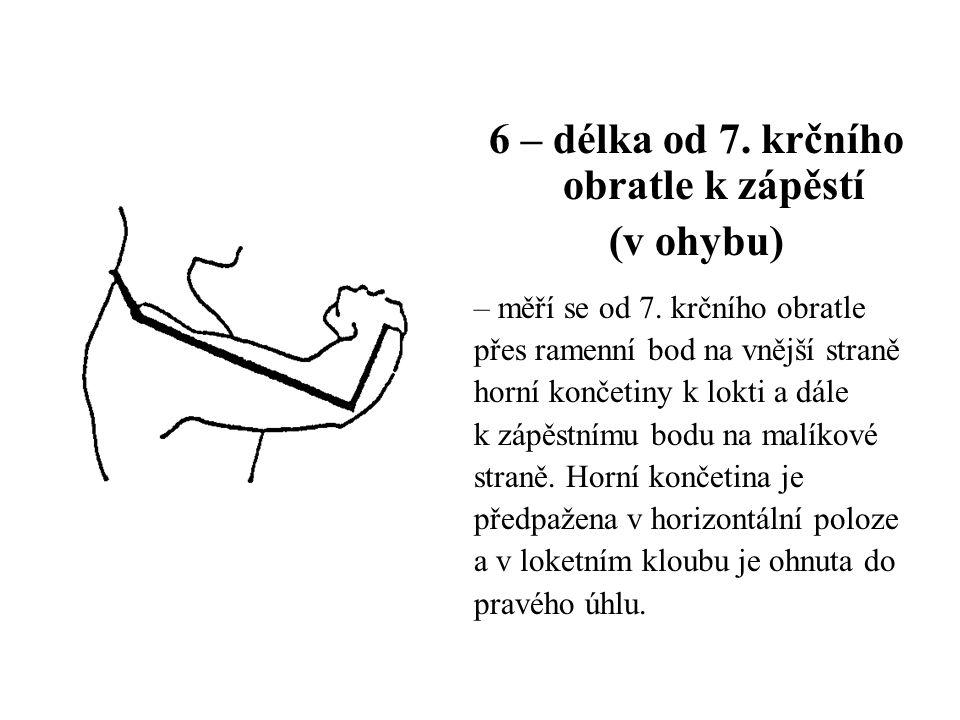 6 – délka od 7. krčního obratle k zápěstí (v ohybu) – měří se od 7. krčního obratle přes ramenní bod na vnější straně horní končetiny k lokti a dále k
