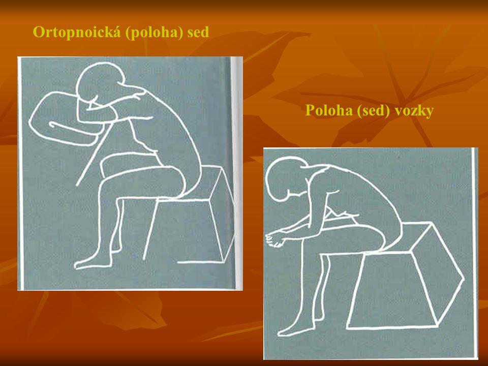 Ortopnoická (poloha) sed Poloha (sed) vozky