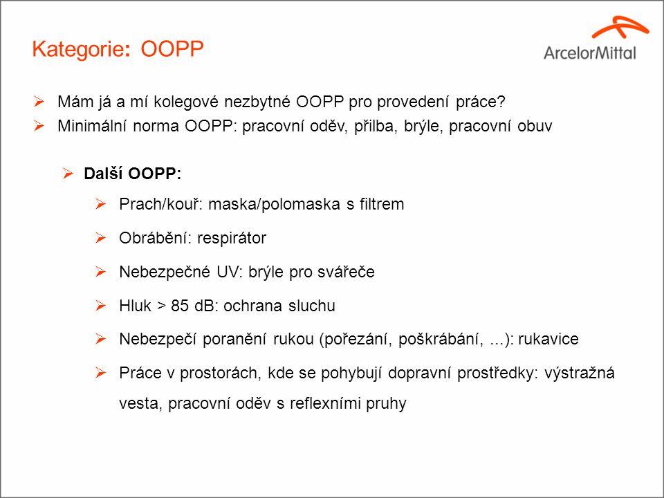Kategorie: OOPP  Mám já a mí kolegové nezbytné OOPP pro provedení práce?  Minimální norma OOPP: pracovní oděv, přilba, brýle, pracovní obuv  Další