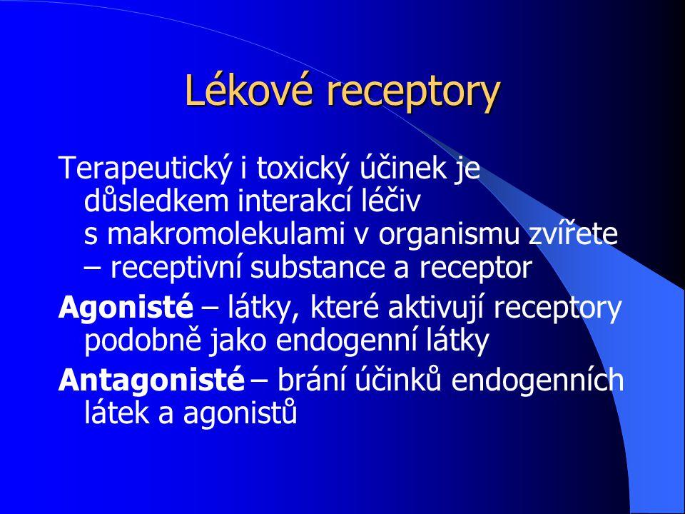 Lékové receptory Makromolekuly receptorů: Většina receptorů jsou bílkoviny, struktura polypeptidů variabilní, specifického tvaru a rozmístění náboje Regulační bílkoviny – prostřednictvím nich působí neurotransmitery, autakoidy, hormony Enzymy – mohou být inhibovány nebo aktivovány Transportní bílkoviny (Na +, K + -ATPáza, digitálisový receptor) Strukturální intracelulární bílkoviny (tubulin)