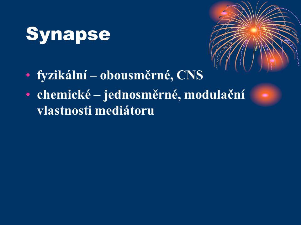 Synapse •fyzikální – obousměrné, CNS •chemické – jednosměrné, modulační vlastnosti mediátoru