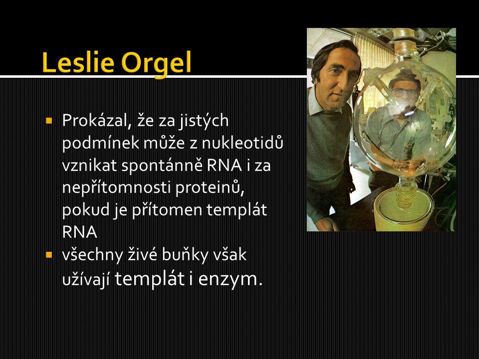  Prokázal, že za jistých podmínek může z nukleotidů vznikat spontánně RNA i za nepřítomnosti proteinů, pokud je přítomen templát RNA  všechny živé b