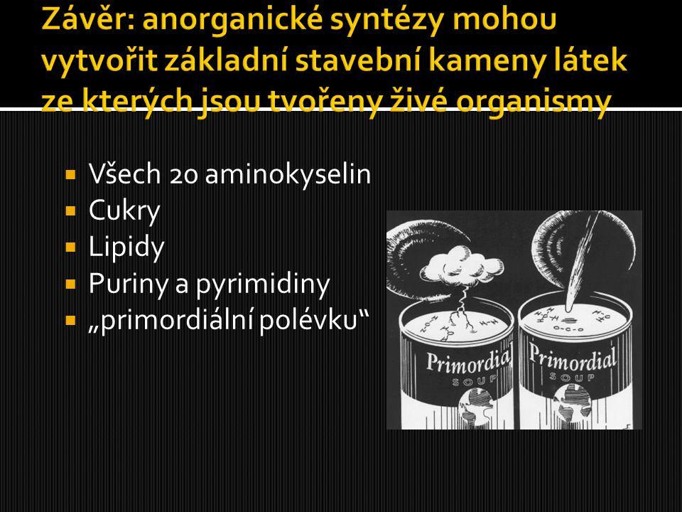 """ Všech 20 aminokyselin  Cukry  Lipidy  Puriny a pyrimidiny  """"primordiální polévku"""""""