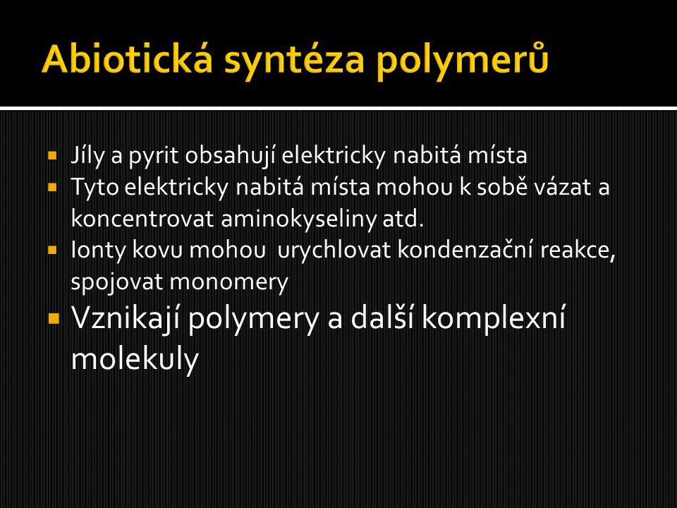  Jíly a pyrit obsahují elektricky nabitá místa  Tyto elektricky nabitá místa mohou k sobě vázat a koncentrovat aminokyseliny atd.  Ionty kovu mohou