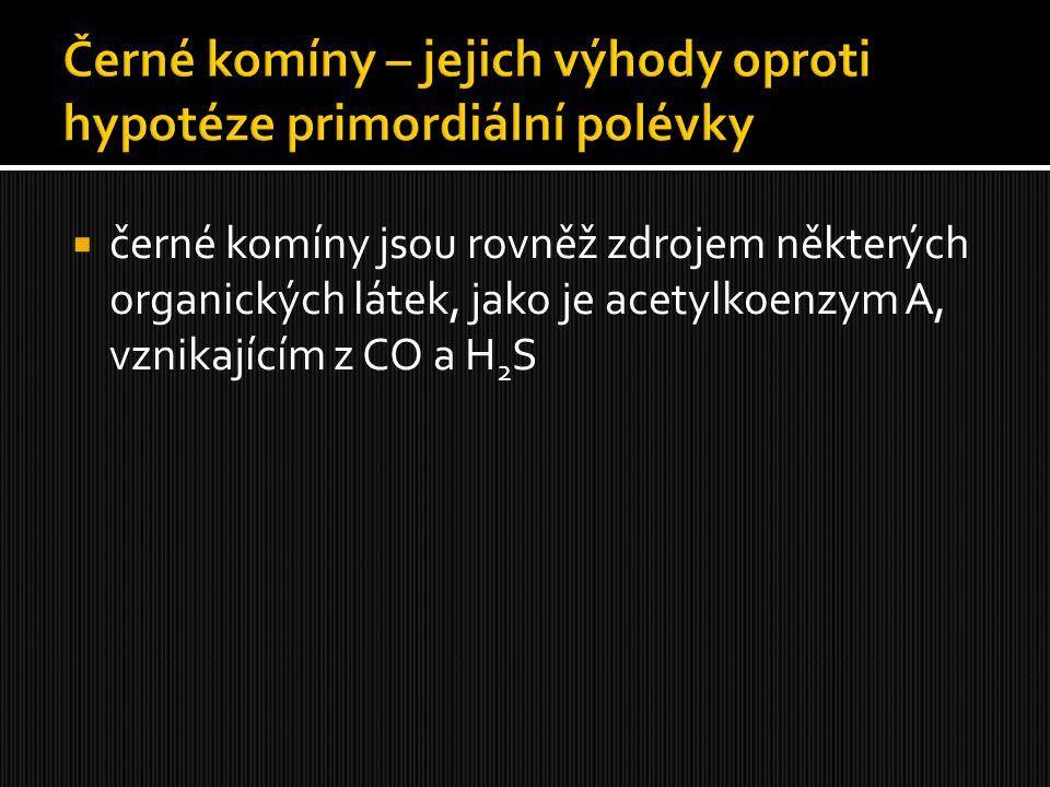  černé komíny jsou rovněž zdrojem některých organických látek, jako je acetylkoenzym A, vznikajícím z CO a H 2 S