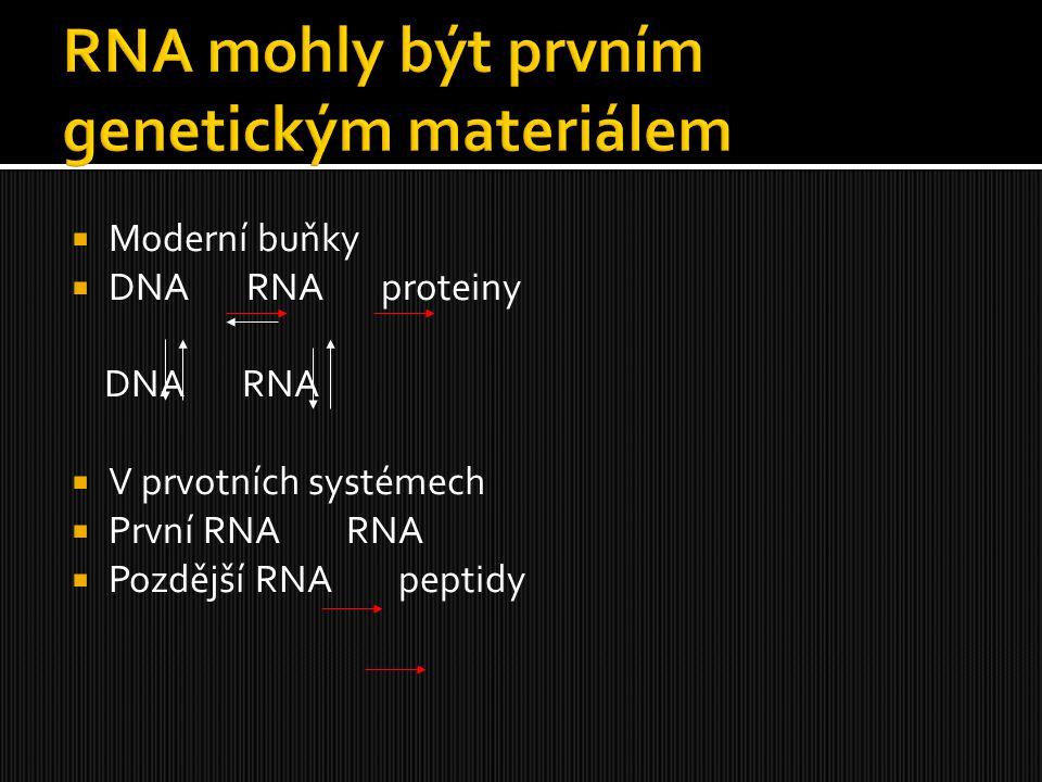  Moderní buňky  DNA RNA proteiny DNA RNA  V prvotních systémech  První RNA RNA  Pozdější RNA peptidy