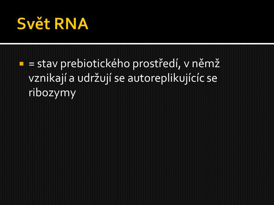  = stav prebiotického prostředí, v němž vznikají a udržují se autoreplikujícíc se ribozymy