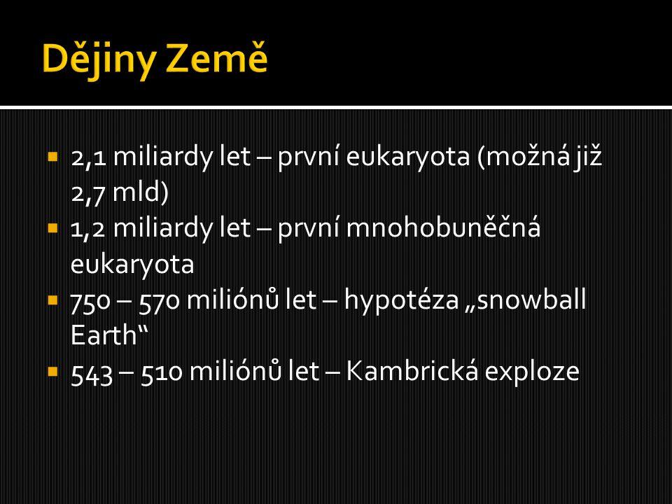 """ 2,1 miliardy let – první eukaryota (možná již 2,7 mld)  1,2 miliardy let – první mnohobuněčná eukaryota  750 – 570 miliónů let – hypotéza """"snowbal"""